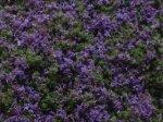 Geländematte Blumenfoliagen 10 x 15 x 2 cm